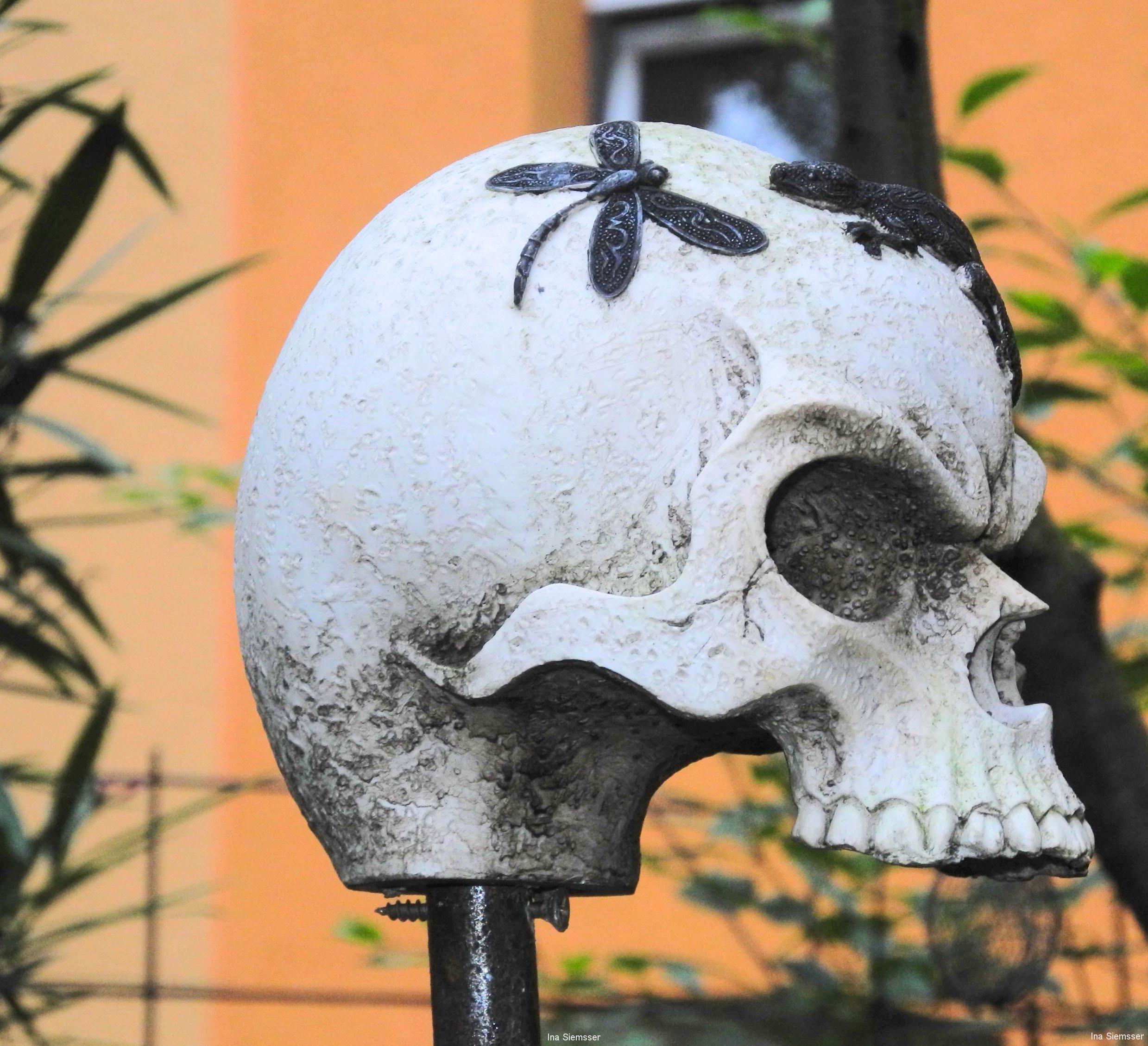 Totenschädel-I