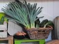 Tante-Suse-Biosk-Gemüse